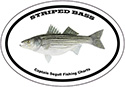 Bumper Sticker Striped Bass